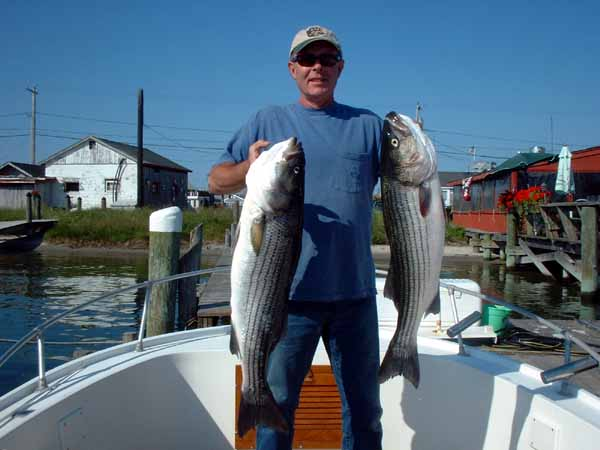 Pete with two more Block Island Bass.
