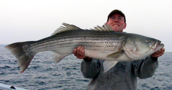 Adventure charters fishing trip photograph gallery for Ri fishing charters