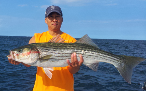Adventure charters fishing trip photograph gallery for Block island fishing charters